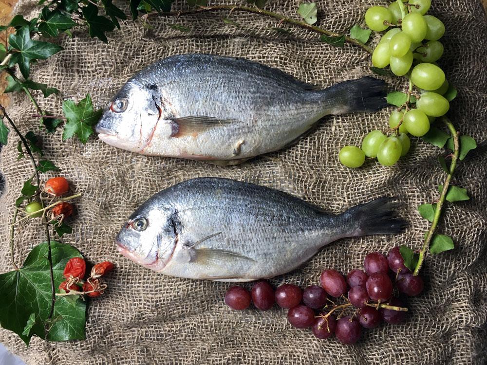 Still Life with Sea Bream & Grapes